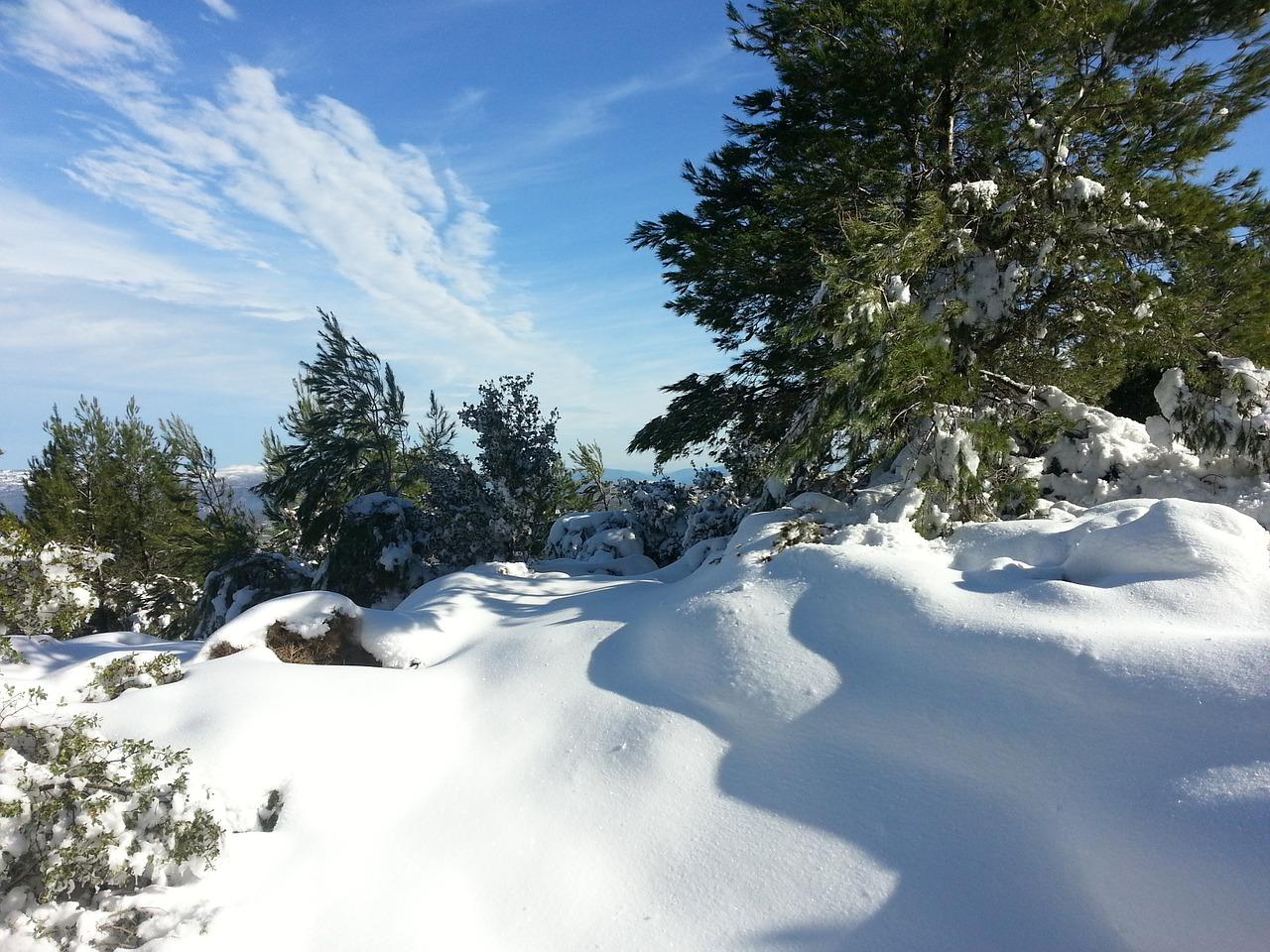 декабрь фото 1