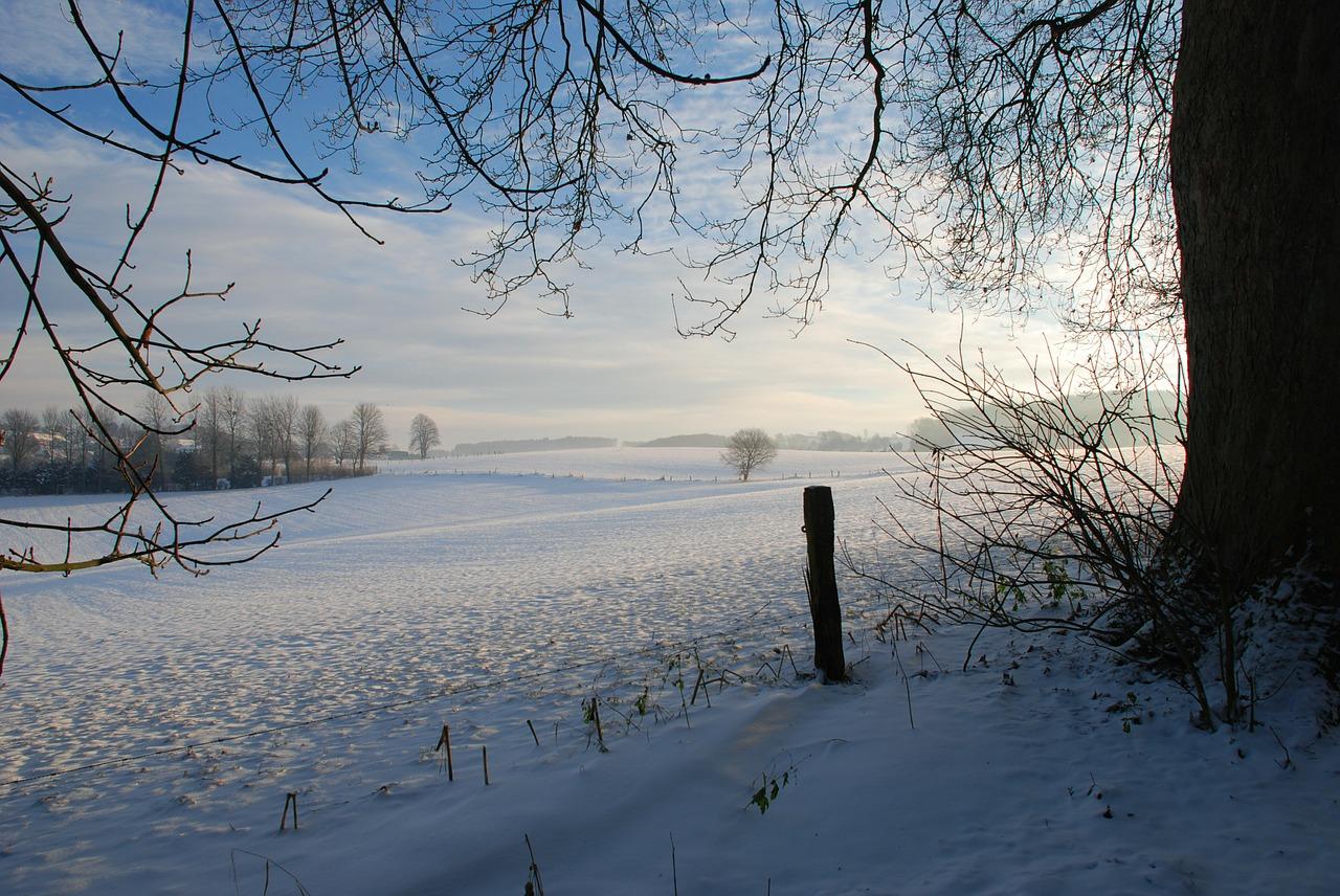 декабрь фото 5