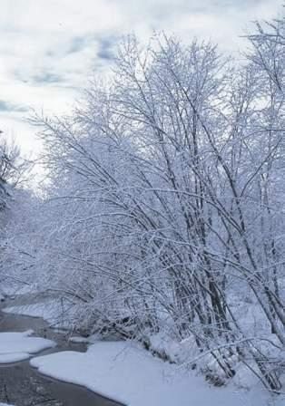зима, январь