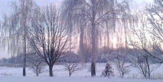 январь, календарь цветовода