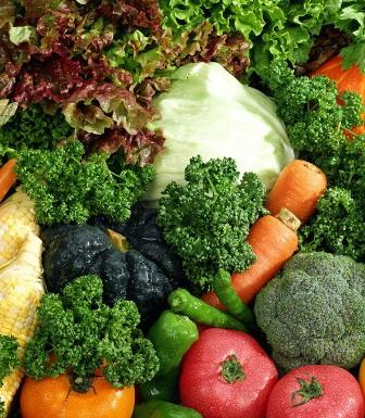 таблица семян овощей