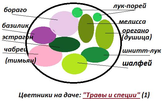 Цветники на даче схема 1