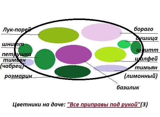 Цветники на даче схема