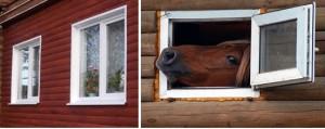 пластиковые окна-horz