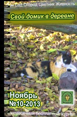 Журнал ноябрь обложка 24