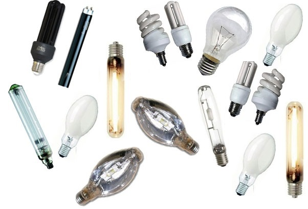 виды ламп 1347959801_small_524