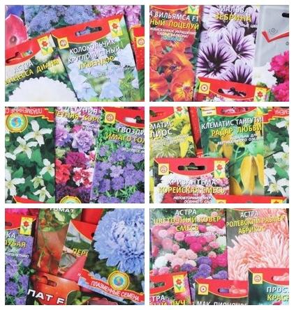 семена цветов - подготовка к посеву