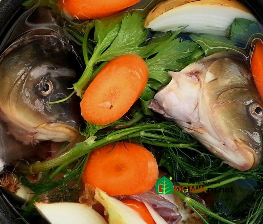 Речная рыба рецепты рыбаков