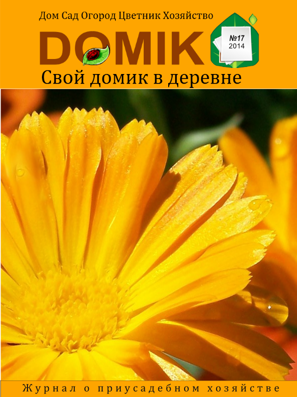 Журнал Свой домик в деревне скачать, читать онлайн