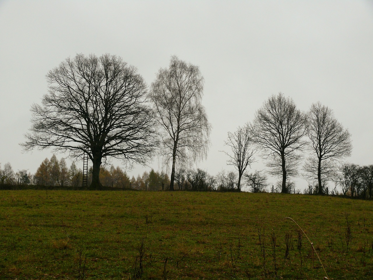 ноябрь фото