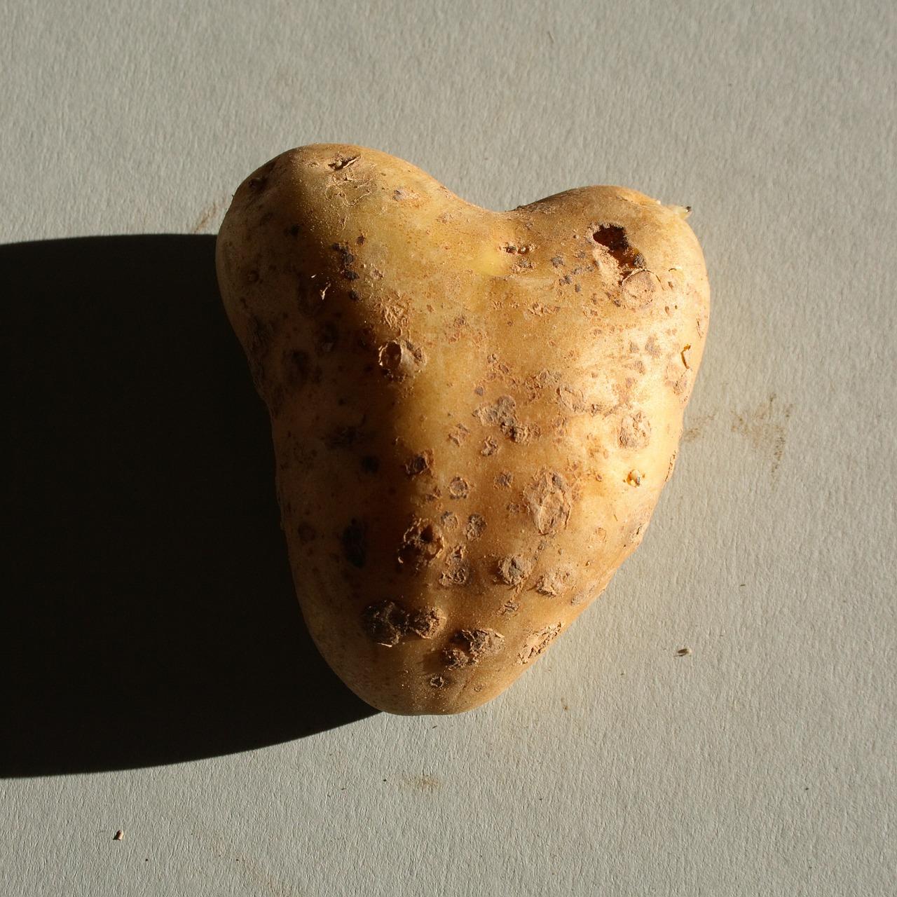 природа в виде сердца 1