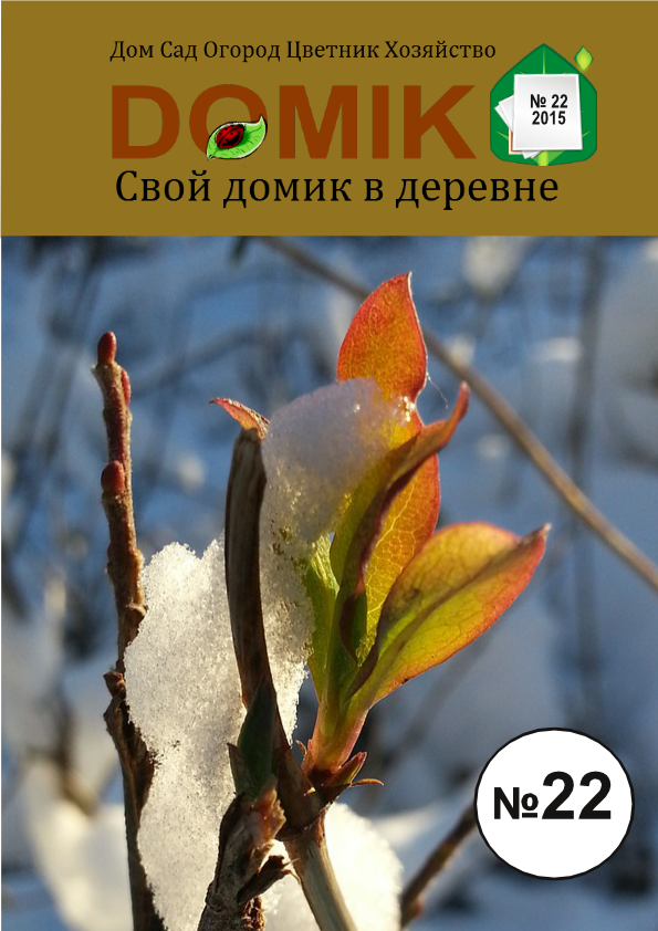 журнал 22-2015