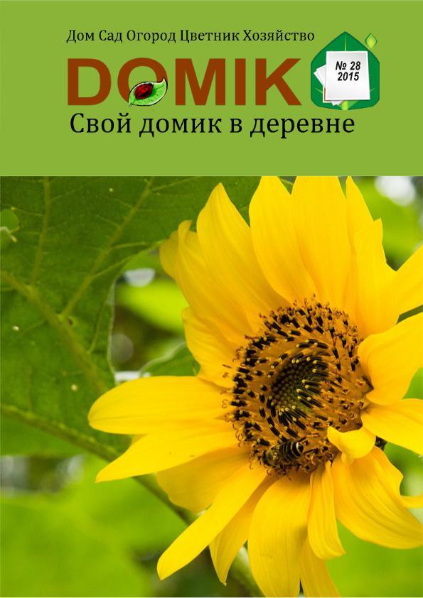 """Журнал """"Свой домик в деревне"""" №28-2015"""