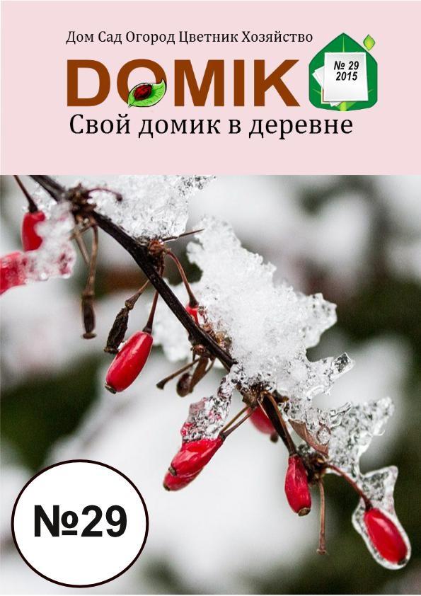ЖУРНАЛ 29-1