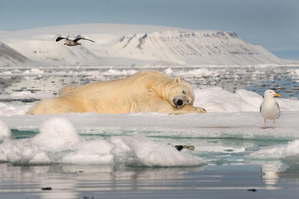 Зимний морской пейзаж фото