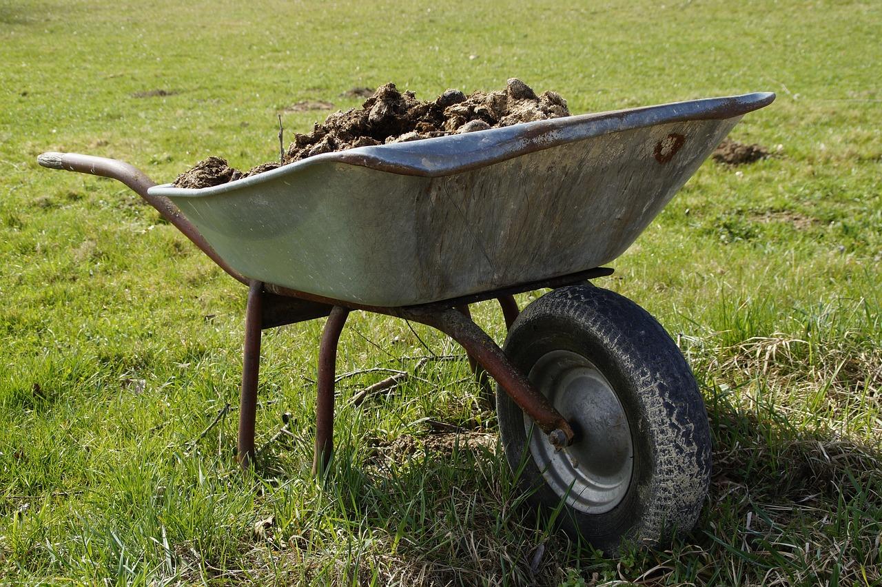 Навоз - органическое удобрение
