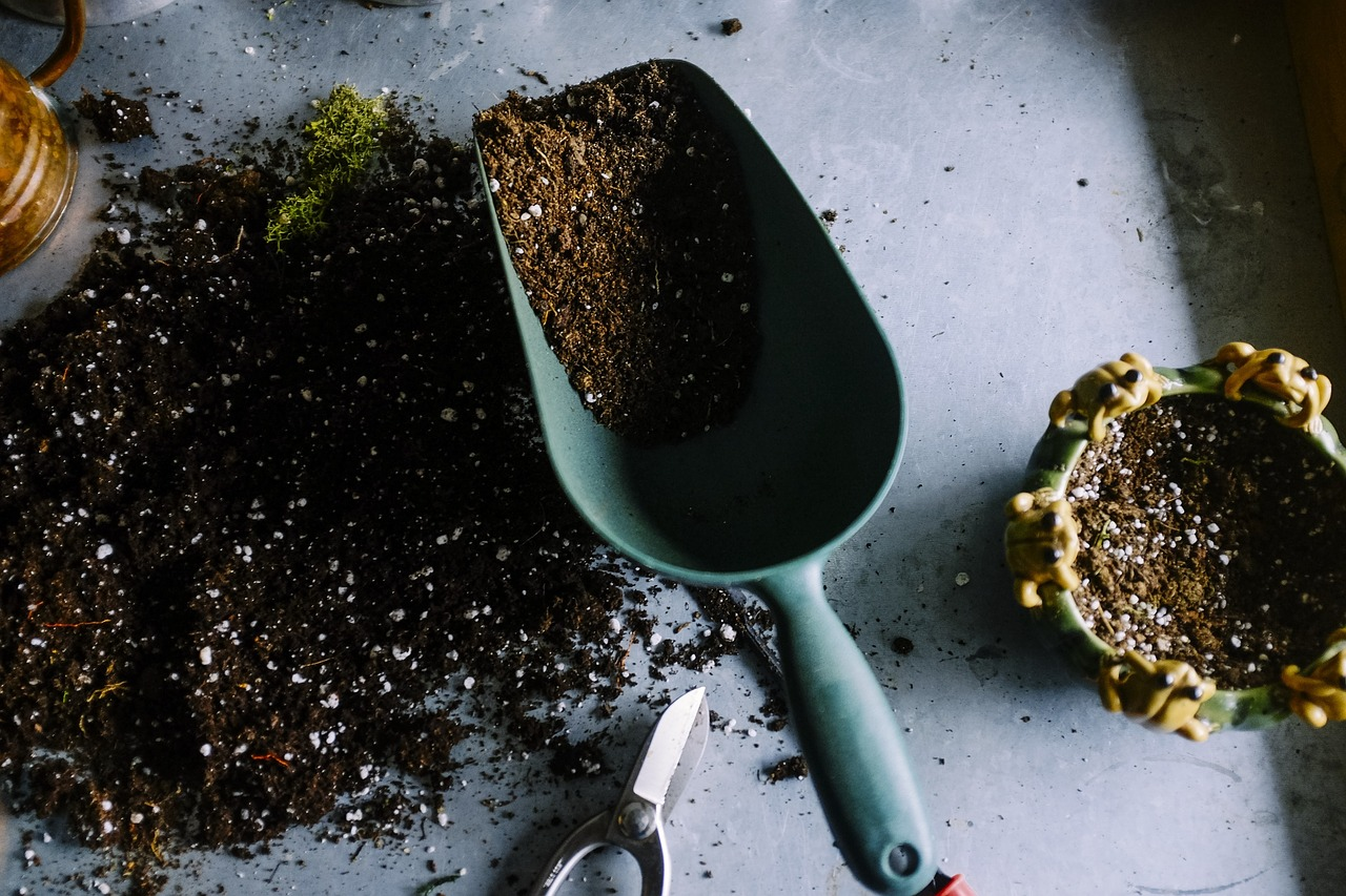 Как правильно купить почвогрунт?