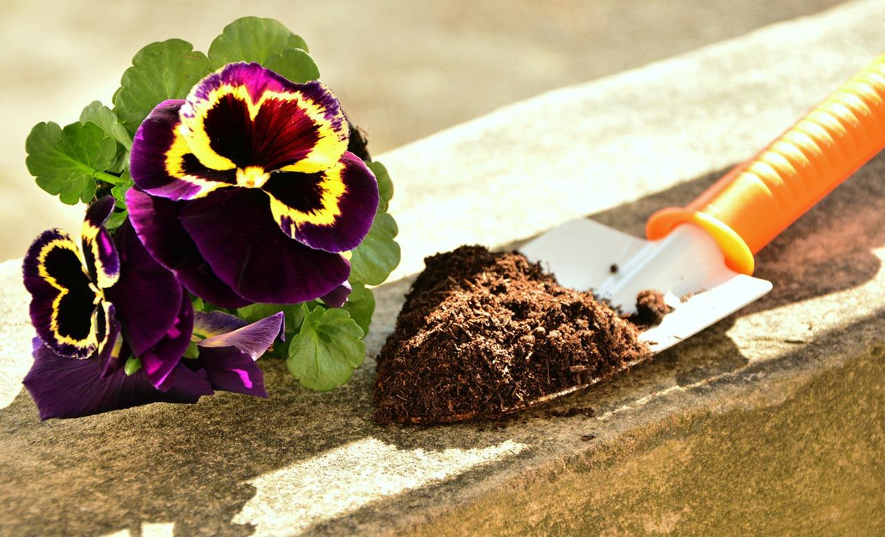 Что такое кислотность почвы?