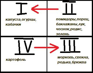Схема севооборота овощных культур