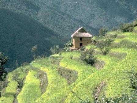 Плодородная почва — залог урожая