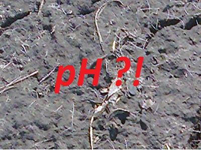 Определение кислотности почвы