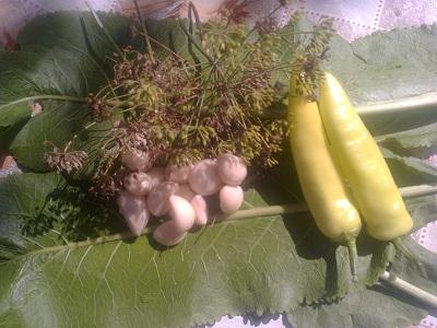 Огурцы на зиму, салаты, рецепты