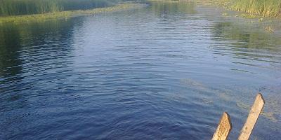 Платная рыбалка-идеи домашнего бизнеса