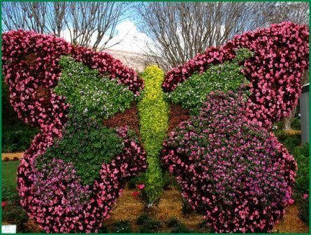 Закладка сада-учитываем природные условия