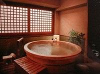 виды бани - японская баня