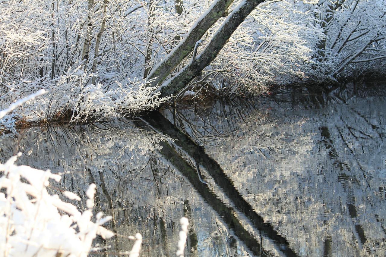 декабрь фото 3