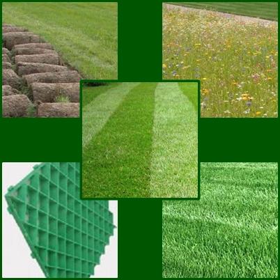 Как сделать свой газон