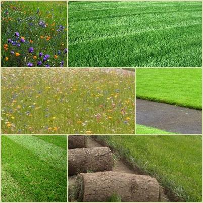 Рулонный газон своими руками-насколько это реально?