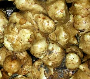 топинамбур- корма для домашних животных