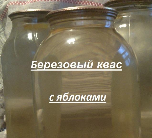 Квас на яблоках и березовом соку