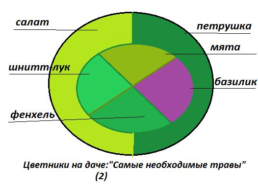 Схема цветника из пряных трав