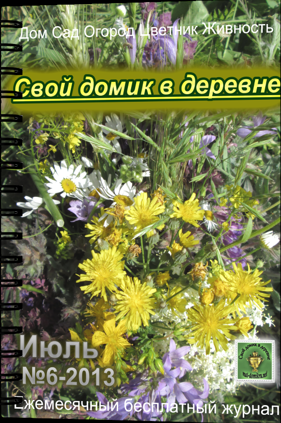 журнал июль 2013