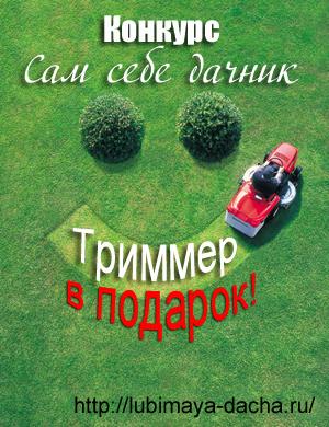 конкурс сам себе дачник tvorcheskij-konkurs