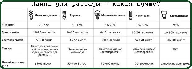 лампы для рассады какая лучше