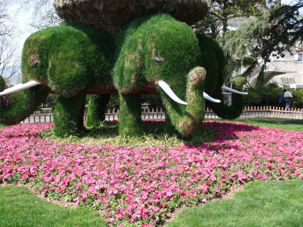 китайский сад xuanwu