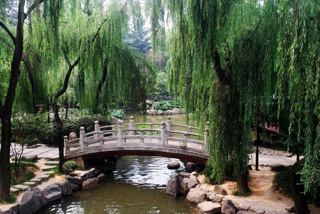 китайский сад фото
