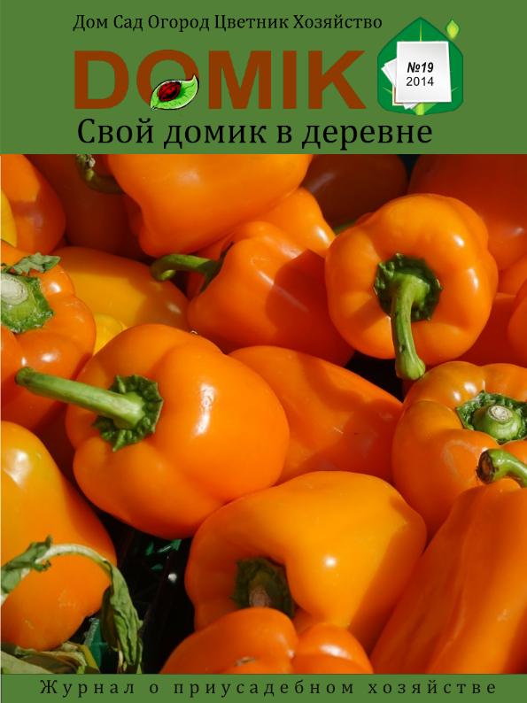 Журнал Свой домик в деревне - выпуск 19
