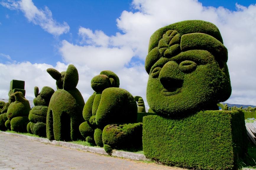 Зеленые скульптуры - декоративные кустарники и деревья