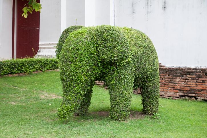 Зеленые скульптуры в саду фото