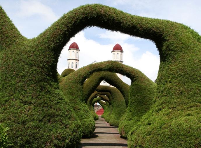 обрезка декоративных кустарников и деревьев