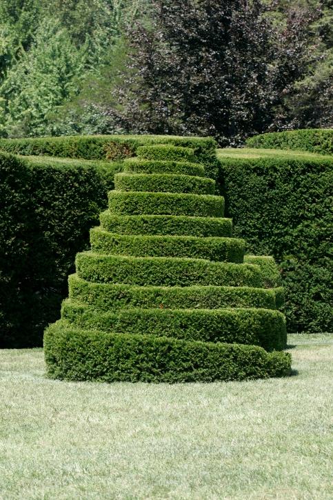 обрезка декоративных кустарников фото