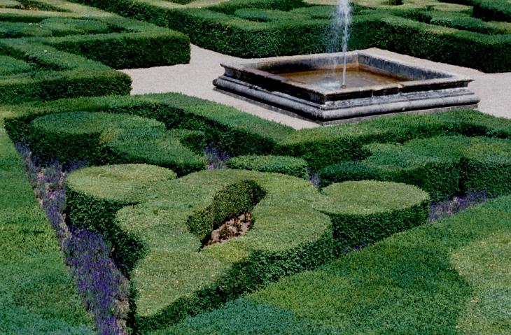 фигурная обрезка кустарников фото