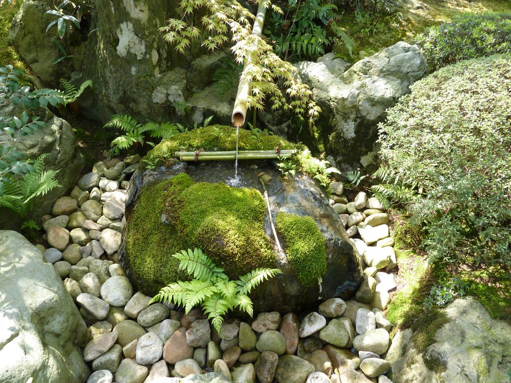 японский сад 7