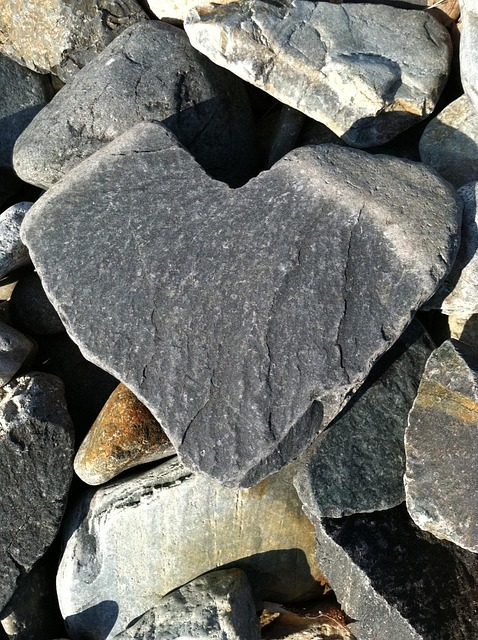 природа в виде сердца 6