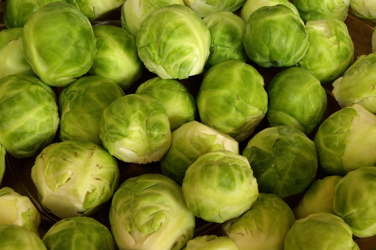 брюссельская капуста полезные свойства