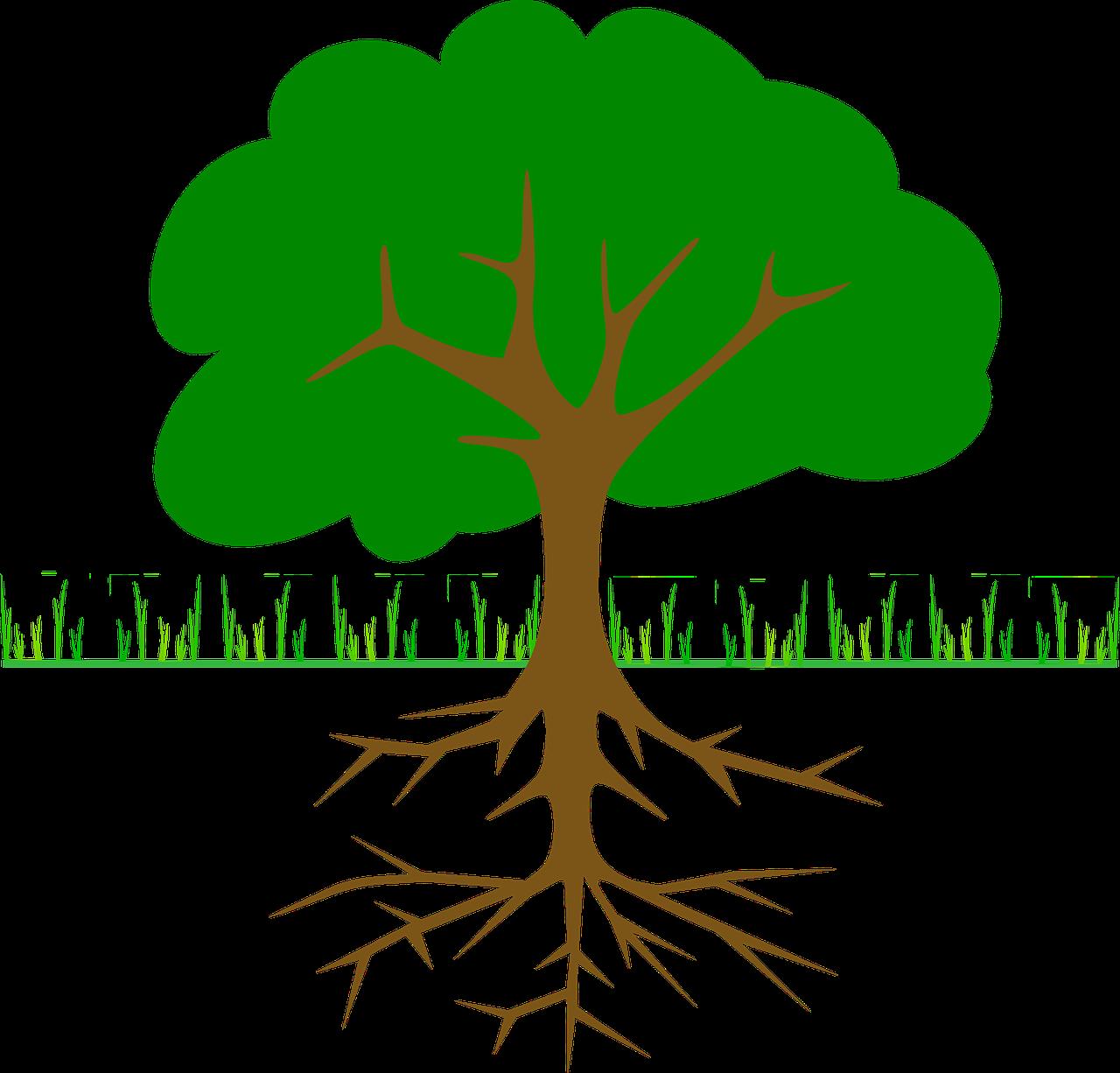 как посадить сад